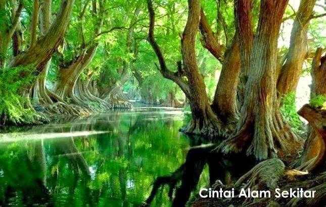 langkah langkah untuk menjaga alam sekitar pertubuhan warisan alam sekitar malaysia