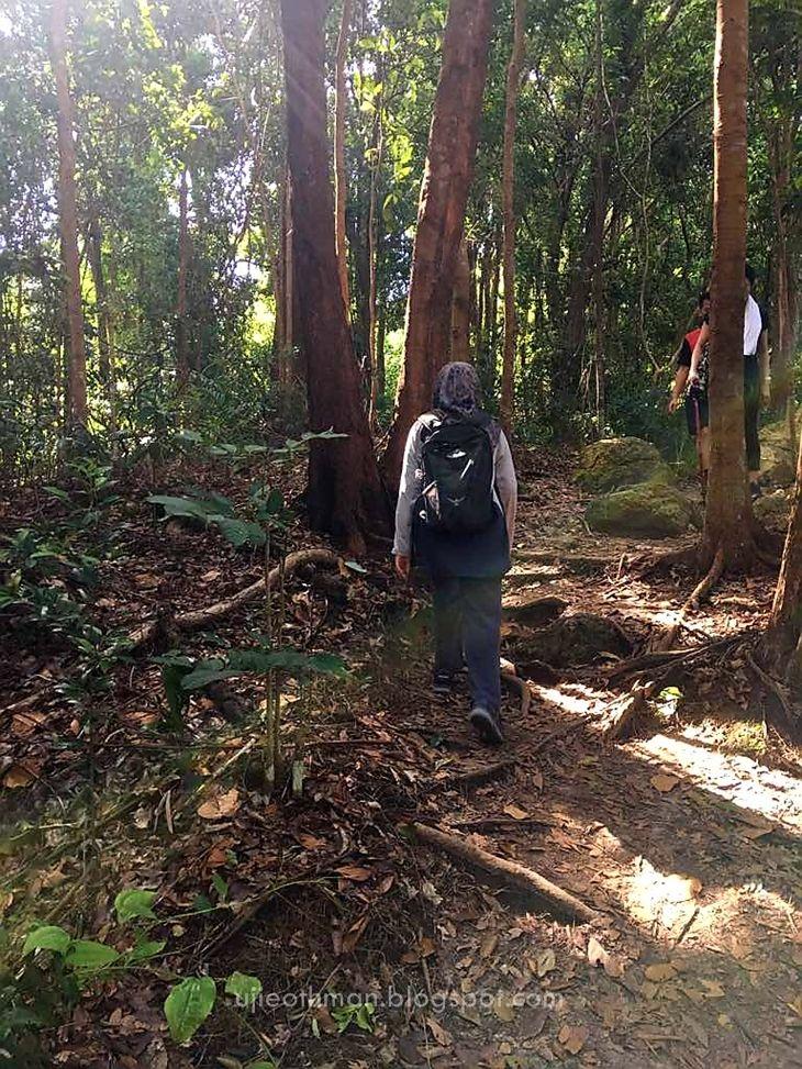 laluan landai sukanya saya dapat jalan dalam hutan tenang hati