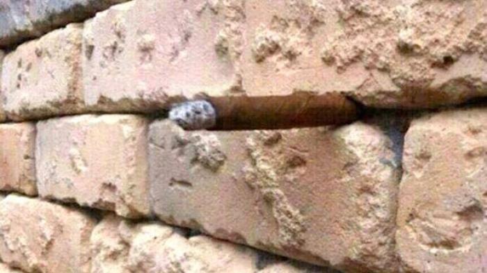 sesuatu terselip di dinding batu bata ini tahukah anda benda apa itu