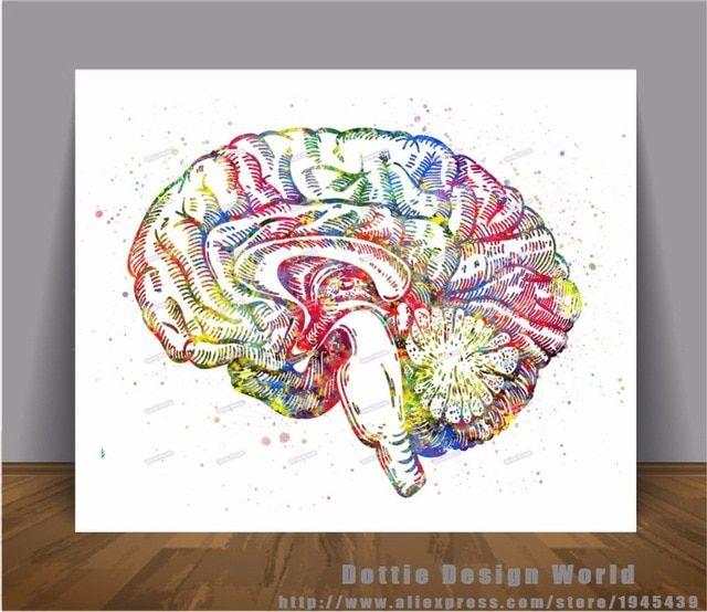 cetak kanvas lukisan cat air medis anatomi otak manusia wall art poster cetak gambar rumah dekorasi