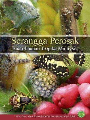 serangga perosak buah buahan