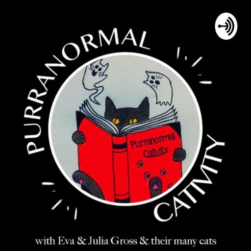 Cat Poster Bernilai Best Episodes Of Purranormal Cativity
