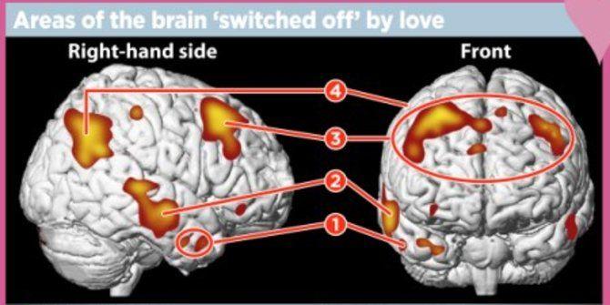 kenali zat zat kimia yang muncul dari tubuh ketika jatuh cinta