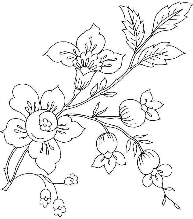 sketsa gambar bunga mawar gambar mewarnai bunga matahari mawar tulip