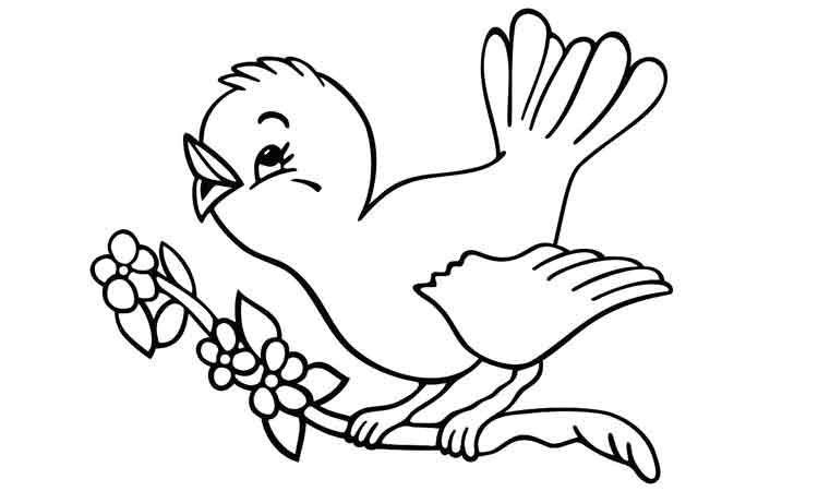 Gambar Mewarna Burung Meletup 26 Gambar Mewarnai Terbaru Untuk Anak Tk Paud Sd Tayo tobot Dll