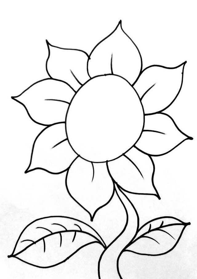 sketsa bunga mawar yang simple mewarna gambar