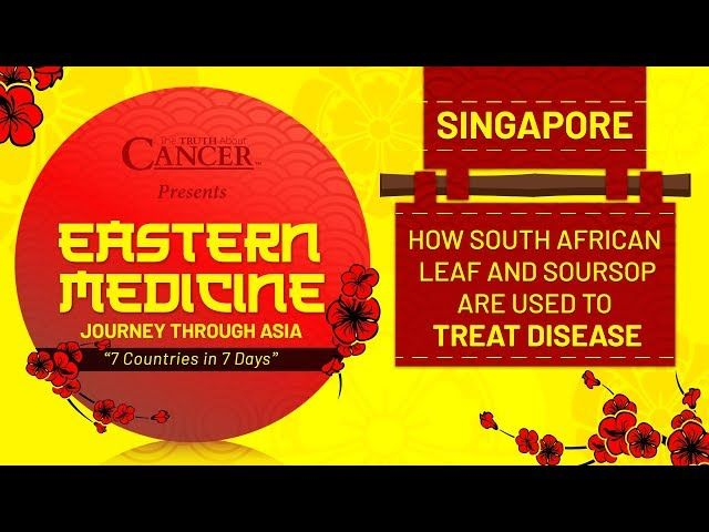 youtube comeastern medicine journey through asia singapore walk with us through a singapore herb gardenhave you or a loved one ever suffered from